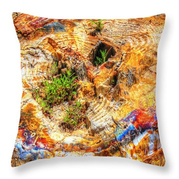 Petrified Abstraction No 2 Throw Pillow