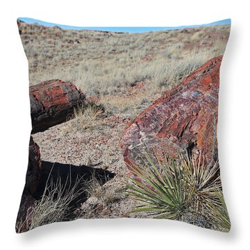 Petrified Afternoon Throw Pillow
