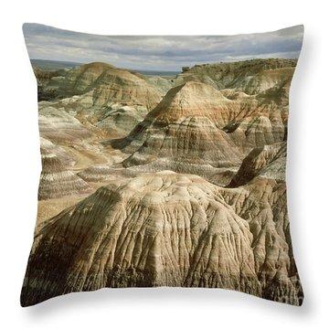 Petrified Forest, Arizona Throw Pillow