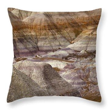 Petrified Forest National Park 4 Throw Pillow