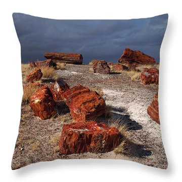 Throw Pillow featuring the photograph Petrified Forest National Park by James Peterson