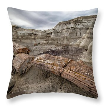 Petrified Remains Throw Pillow