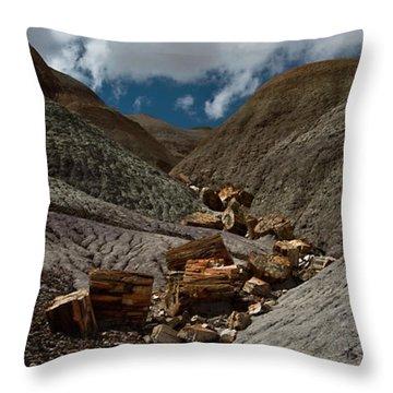 Petrified River Throw Pillow