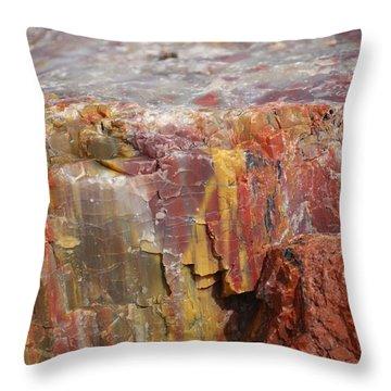 Petrified Wood 2 Throw Pillow