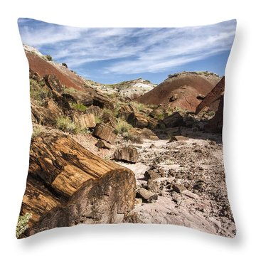 Throw Pillow featuring the photograph Petrified Wood In The Painted Desert by Melany Sarafis