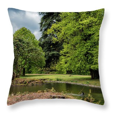 Petworth Lake With Dog Throw Pillow by Michael Hope