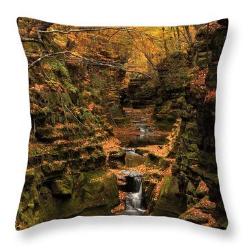 Pewit's Nest - Wisconsin Throw Pillow