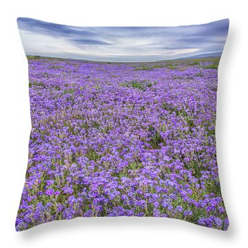 Throw Pillow featuring the photograph Phacelia Field And Clouds by Marc Crumpler