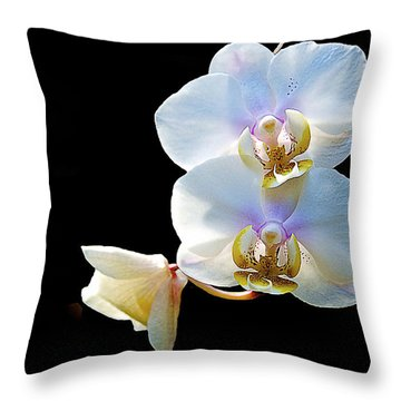 Phalaenopsis Culican #1 Nobby's Amy Shin Hua Throw Pillow