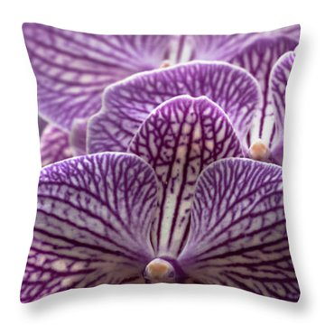 Throw Pillow featuring the photograph Phalaenopsis Orchid by Cristina Stefan