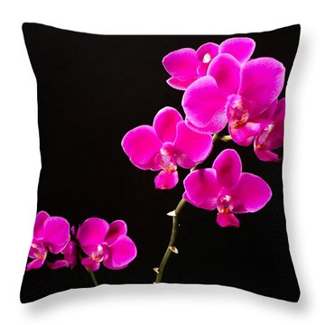 Throw Pillow featuring the photograph Phalaenopsis Orchid - Fuchsia by Cristina Stefan