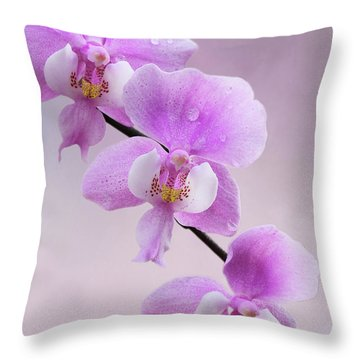 Phalaenopsis Schilleriana Fragrant Butterfly Orchid V2 Throw Pillow