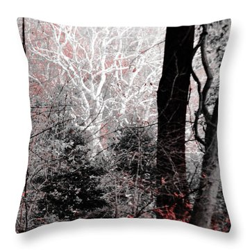 Phantasm In Wildwood Throw Pillow