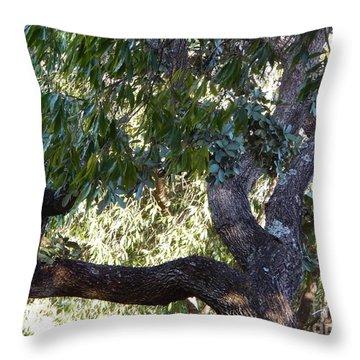 Throw Pillow featuring the photograph Phantasmagorical by Beto Machado