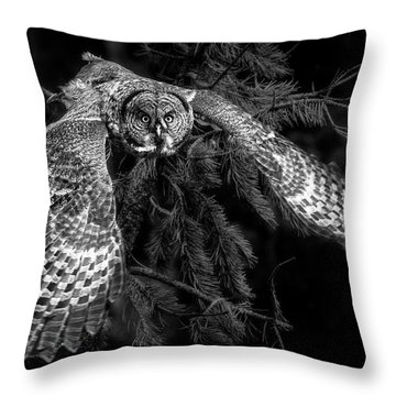 Phantom Of The North Throw Pillow