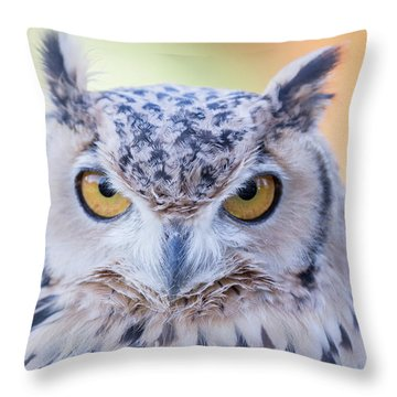 Pharaoh's Eagle-owl Throw Pillow