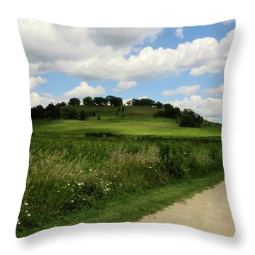 Pheasant Branch Hill Throw Pillow by Kimberly Mackowski