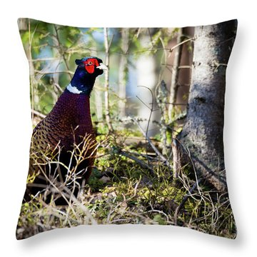 Pheasant In The Forest Throw Pillow