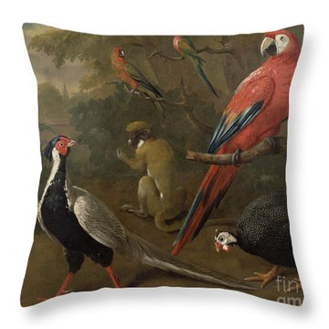 Pheasant Macaw Monkey Parrots And Tortoise  Throw Pillow by Charles Collins