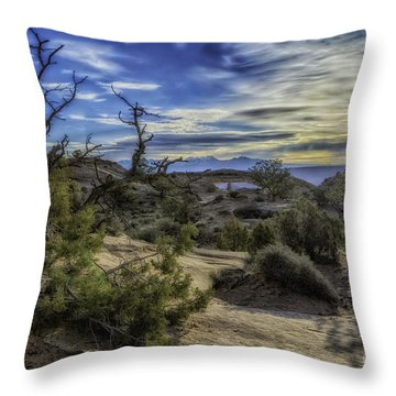 Throw Pillow featuring the photograph Phenomenal by Bitter Buffalo Photography