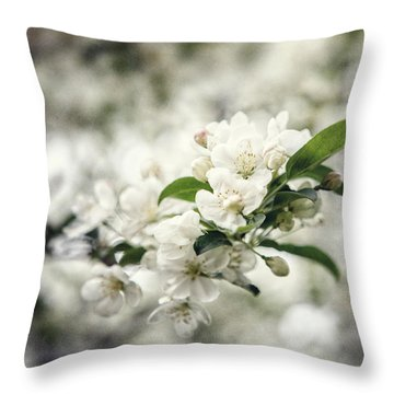 Philadelphia Beauty Throw Pillow by Lisa Russo