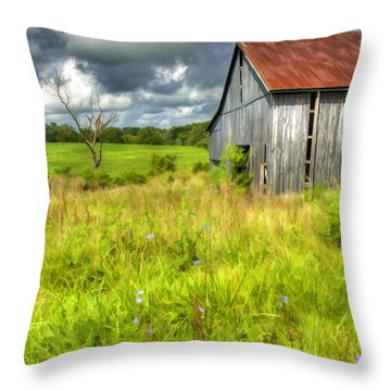 Phillip's Barn Throw Pillow