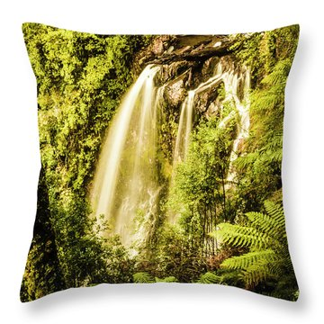 Philosopher Falls, Western Tasmania Throw Pillow