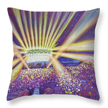 Phish At Dicks 2016 Throw Pillow