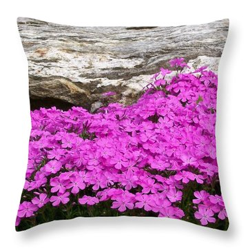 Phlox On The Rocks Throw Pillow