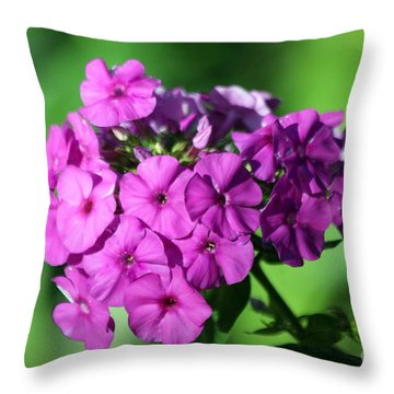 Throw Pillow featuring the photograph Phlox by Irina Hays