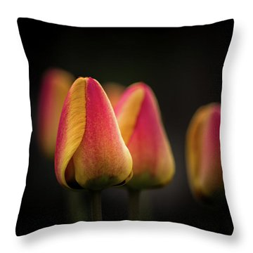 Phocus Pocus Throw Pillow