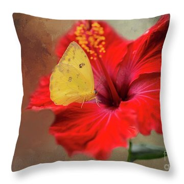 Phoebis Philea On A Hibiscus Throw Pillow by Eva Lechner