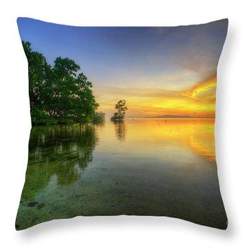 Throw Pillow featuring the photograph Phoenix Nights 5.0 by Yhun Suarez