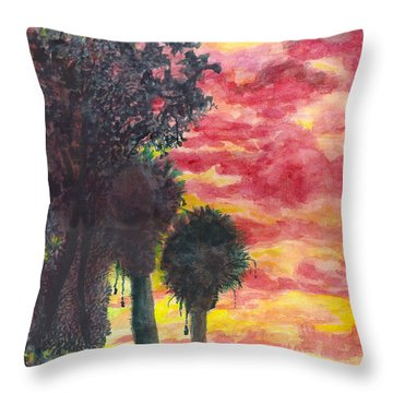 Phoenix Sunset Throw Pillow