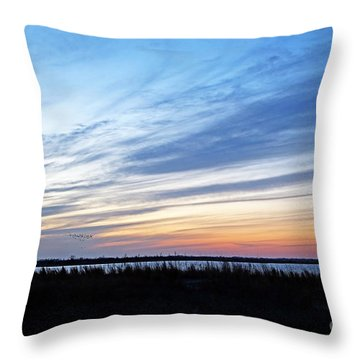 Photo Blind Throw Pillow