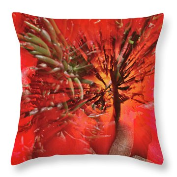 Throw Pillow featuring the photograph Photo Sin Thesis by Susan Capuano