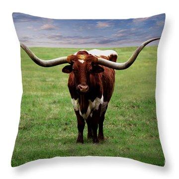 Photo Texas Longhorn A010816 Throw Pillow