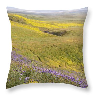 Throw Pillow featuring the photograph Photographing Carrizo by Marc Crumpler