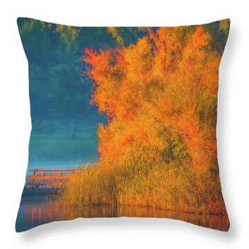 Throw Pillow featuring the photograph Photographing The Sunrise by Marc Crumpler