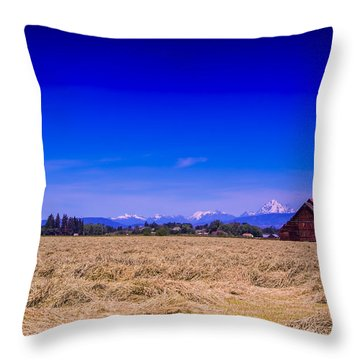 Photography Throw Pillow by Dale Stillman