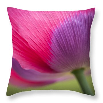 Poppy Close Up Throw Pillow