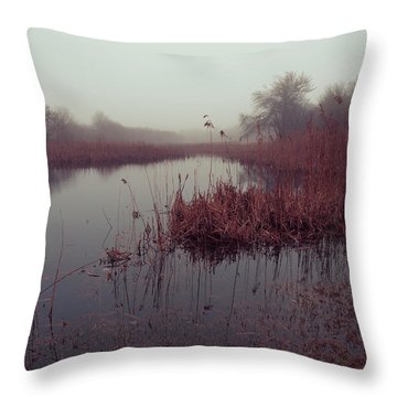 Throw Pillow featuring the photograph Phragmites And Fog by Andrew Pacheco
