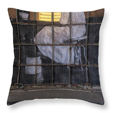 Throw Pillow featuring the photograph Physician In The Window by Tom Singleton