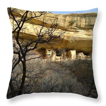 Pic 5 Throw Pillow