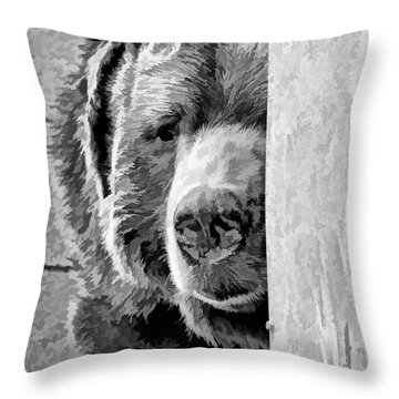 Picabear Throw Pillow