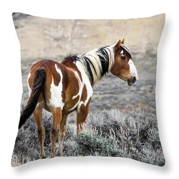 Picasso - Wild Mustang Stallion Of Sand Wash Basin Throw Pillow