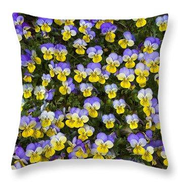 Pick Me-pansies Throw Pillow