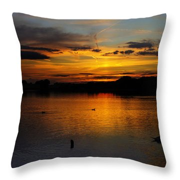 Pick Mere Dusk Throw Pillow by Phil Tomlinson