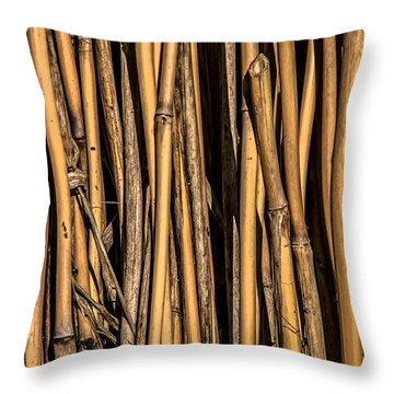 Pick-up Sticks Throw Pillow