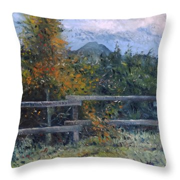 Picket Fence Near Heidelberg Western Cape South Africa Throw Pillow by Enver Larney
